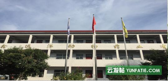 鑫远洋饲料厂家招合作加盟商、大包团队