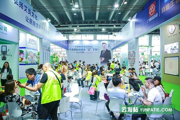 广州医疗医养健康展会上海金耶公司