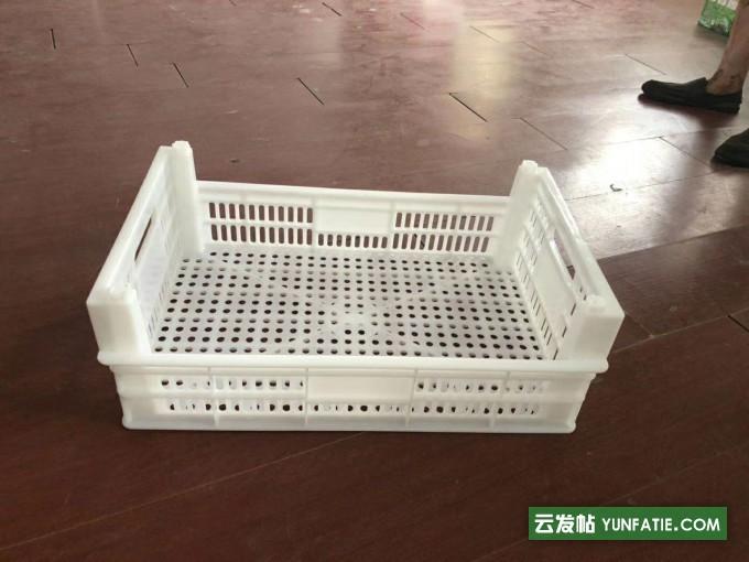 蘑菇筐生产厂家水产筐塑料周转框