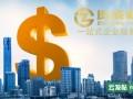 上海资成财务咨询有限公司