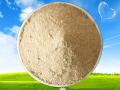 光合细菌_沼泽红甲单胞菌_调节水质_平衡水体PH