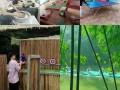 广州南沙适合节假日出游的农家乐生态园